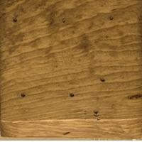 Matte Medium Finish Pine